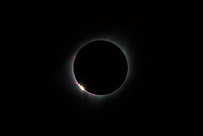 Prominences, Chromosphere, Corona, and Bailey's Beads