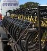 003a-bikes at cape