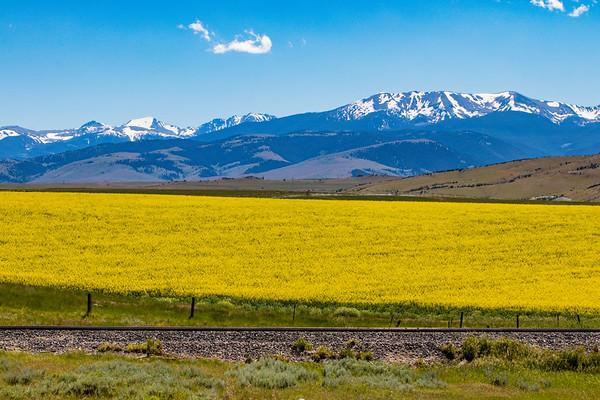 Layers of Montana
