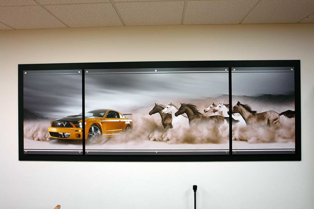 Mustang Triptych