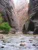 zion national park's THE NARROWS canyon...virgin river