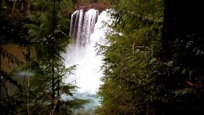 Koosah Falls from pathway-muted