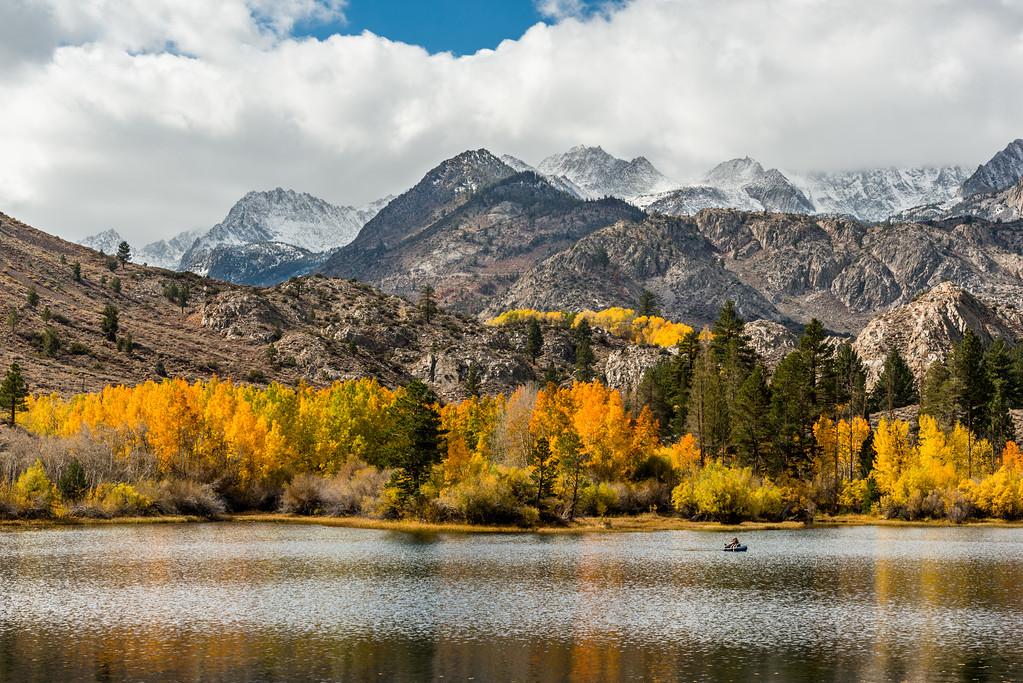 Eastern Sierra Fall Color
