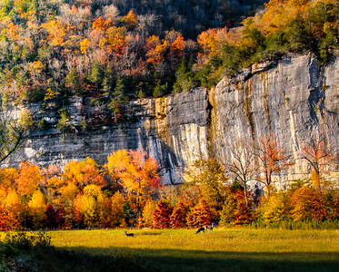 Fall Color at Steel Creek - Buffalo National River, Arkansas
