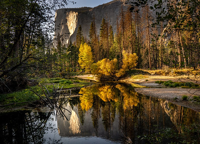 Evening Reflections by El Capitan