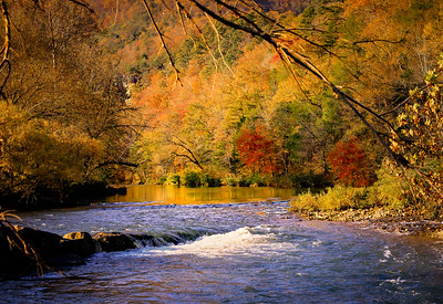 Fall Color along Steel Creek - Arkansas