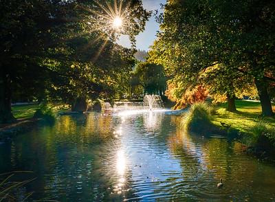 Sunny Morning at Queenstown Gardens