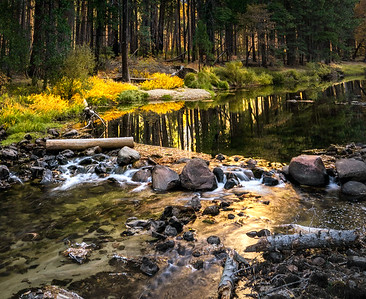Fall Morning on the Merced River