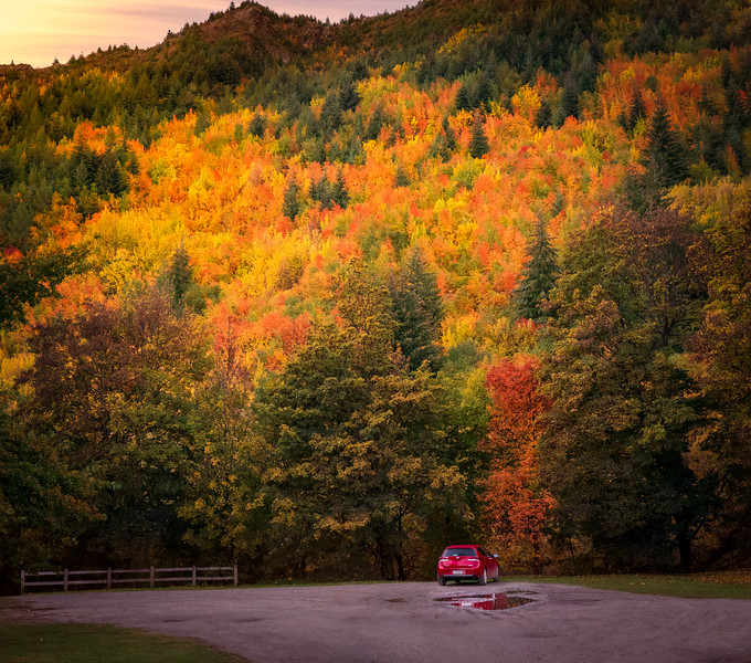 Fall Color at Arrowtown