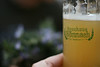 brauhaus bier in bonn
