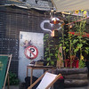 stattgarten: cherubs, colored downlighting, sunflowers and