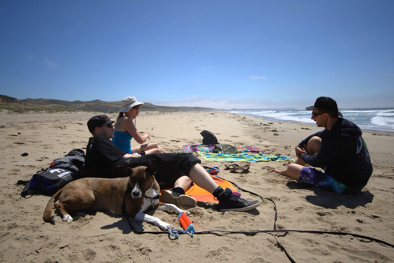 beach day with gab and oli and nika the dog