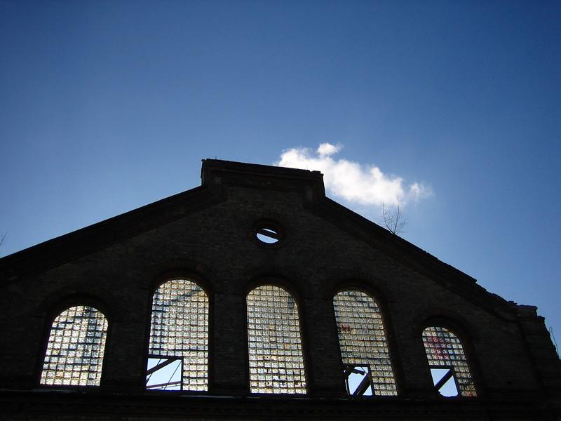 sunny windows