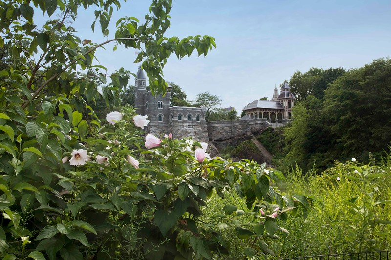 Belvedere Castle, Summer 2020