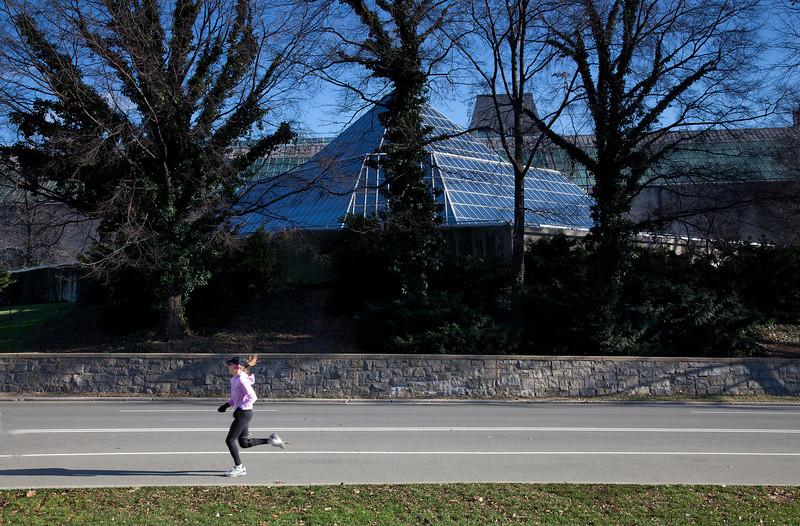 Running Behind the Lehman Wing of the Metropolitan Museum of Art