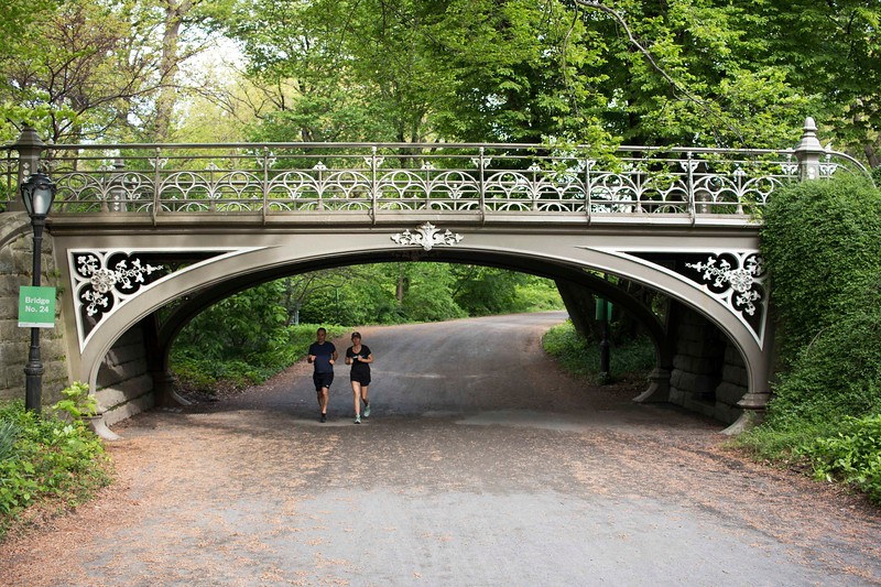 Running Through Bridge No. 24, Over Bridal Path, Near East Drive and 86th St., one of the oldest cast iron bridges in America