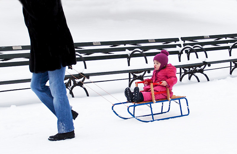 First Sled Ride in the Park