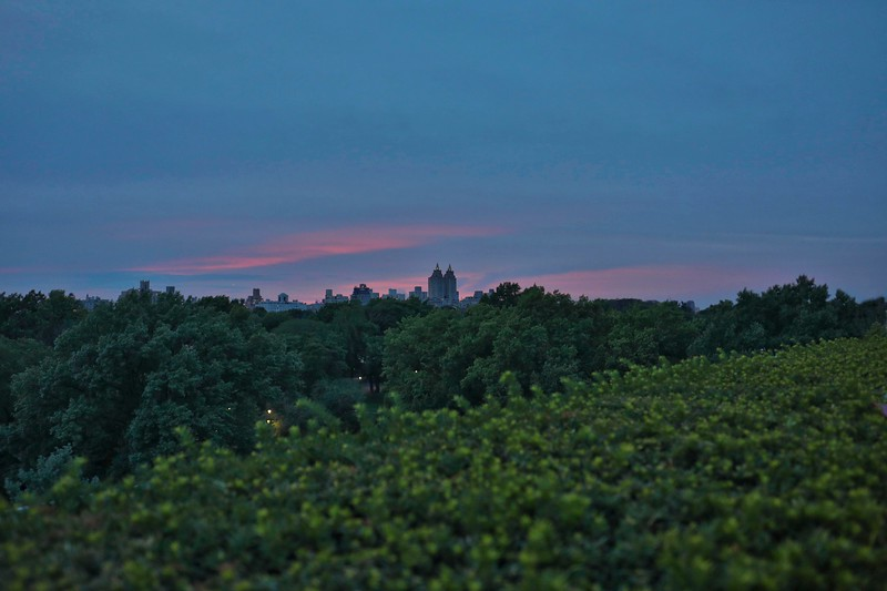 Sunset Over Central Park from Met Rooftop