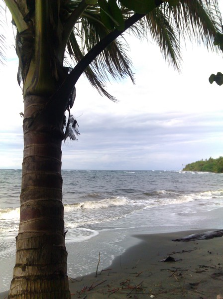 playa grande, manzanillo
