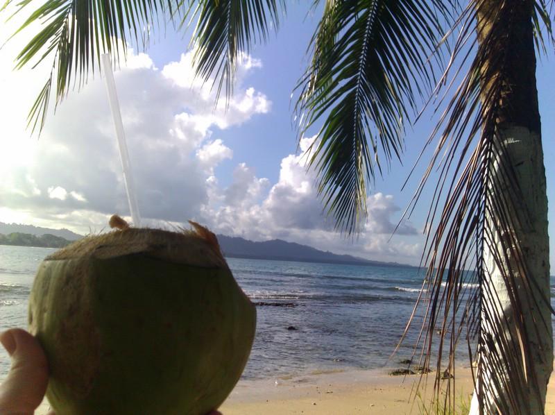 fresh pipa on the beach
