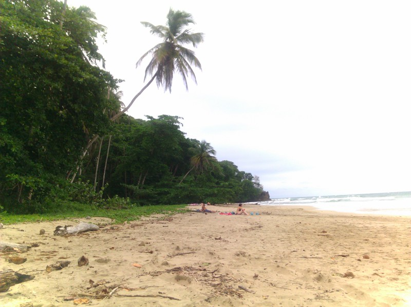 north end of playa cocles in costa rica
