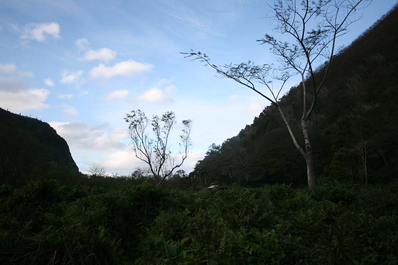 the bottom of the waipio valley
