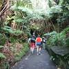 entering the lava tubes