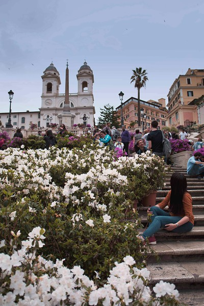 Annual May Flower Show at Spanish Steps, Rome