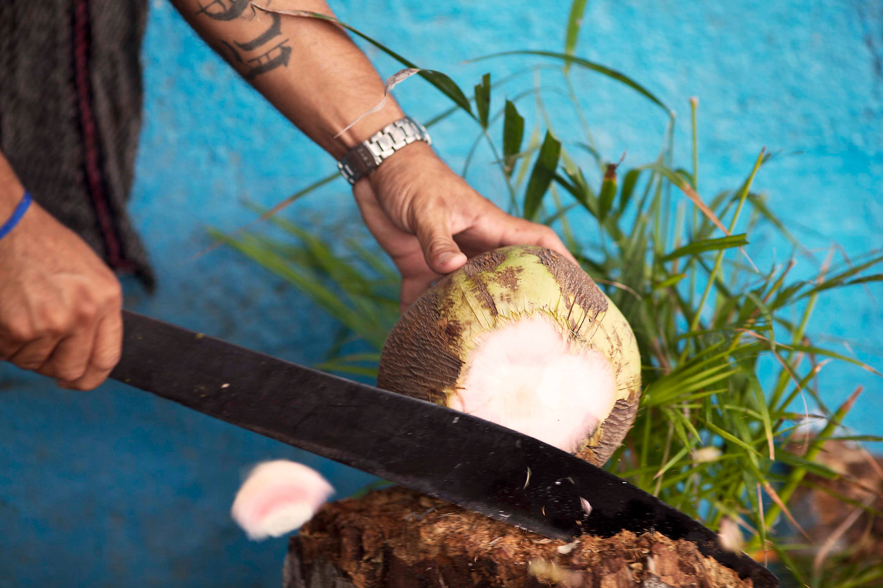 Machete and Coconut