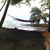 hammock on the caribbean, at La Sula Sea Lounge in costa rica
