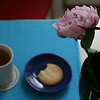 peonies, tea and sympathy