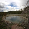 leather pool at yellowstone