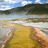heat loving bacteria making awesome rivulets of color at Yellowstone