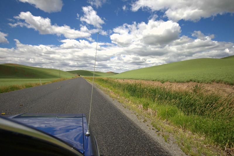 moar windoze xp driving