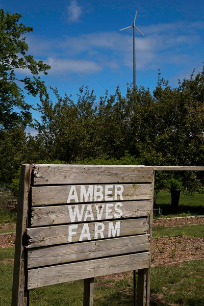 Amber Waves Farm, Amagansett