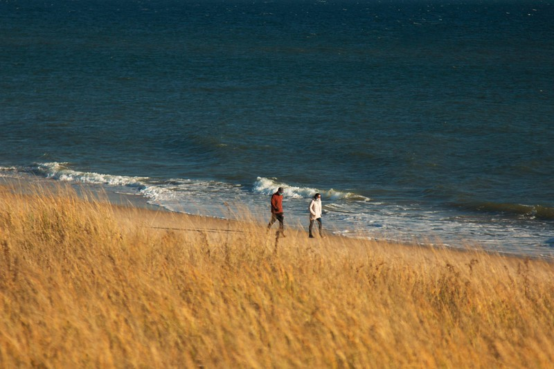 Late Autumn Walk on the Beach, Montauk