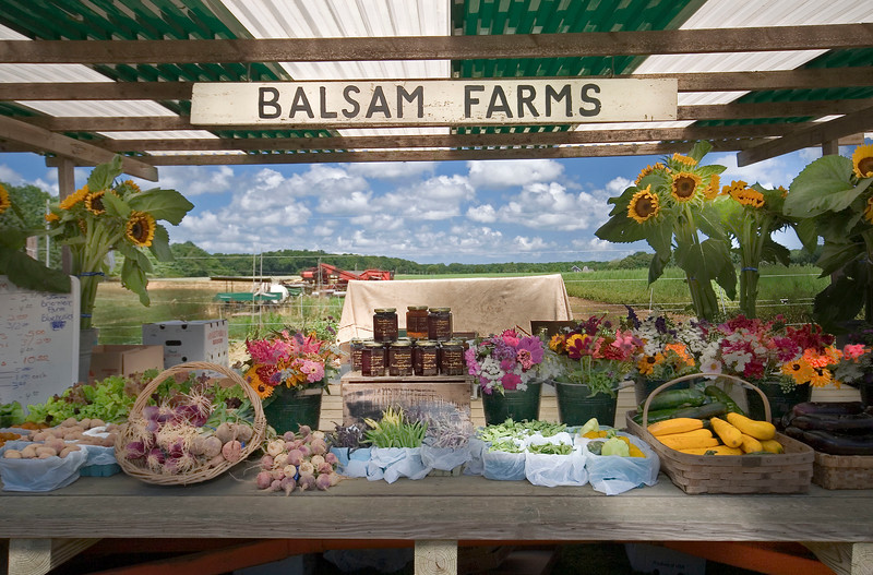 Balsam Farms, Earlier Days
