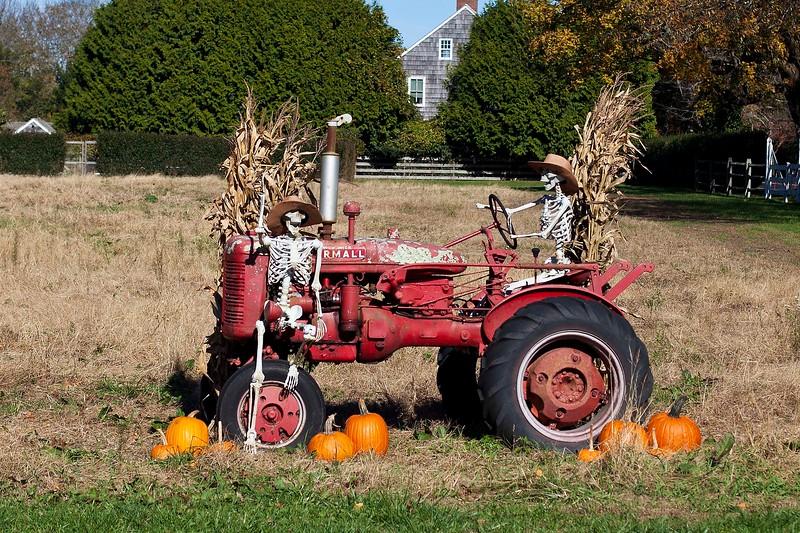 Halloween, East Hampton