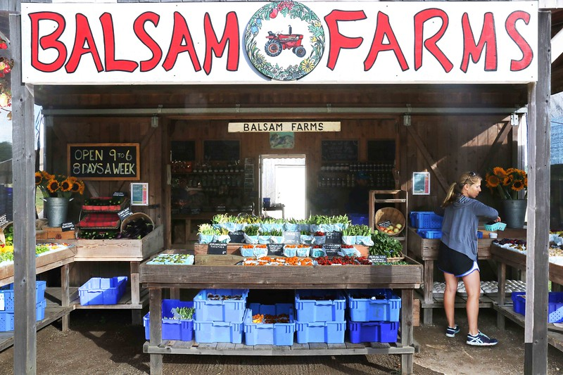 Balsam Farms Fruits and Vegetables