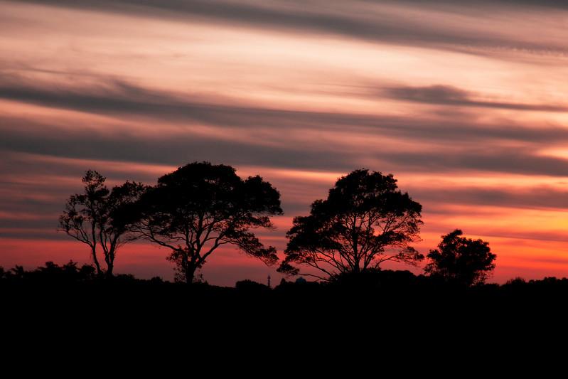 Amagansett Sunset