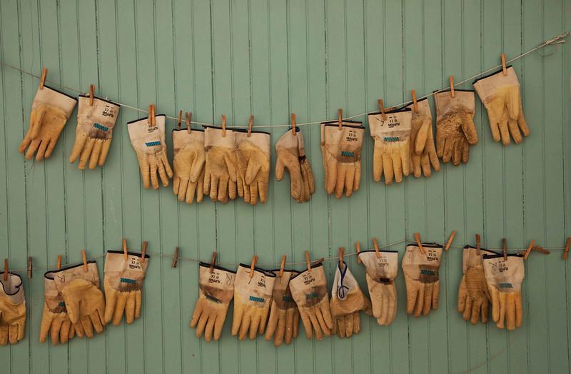 Oyster Shucking Gloves, Greenport