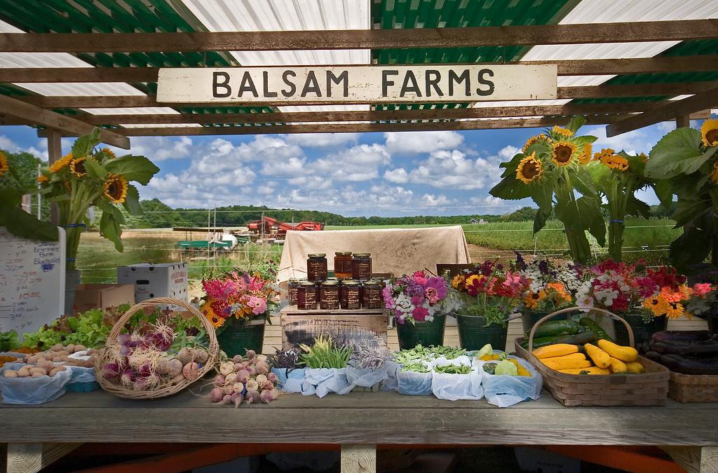 Balsam Farms, Amagansett