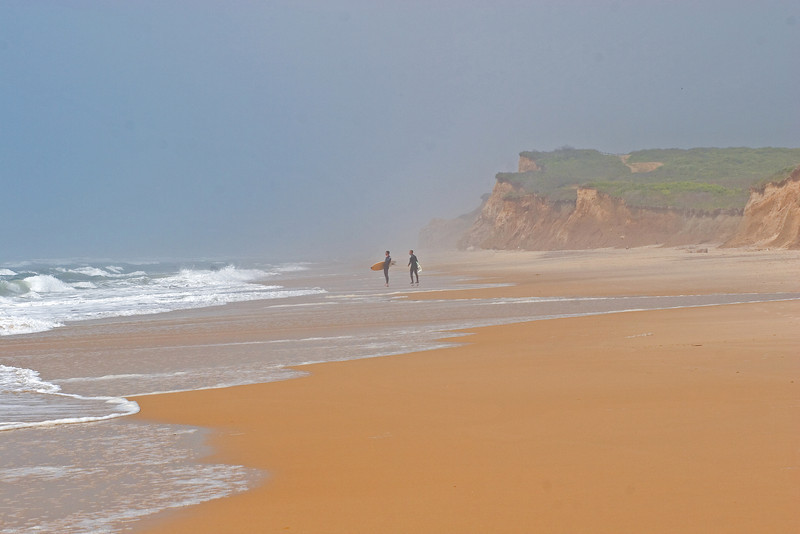 Surfers, Ditch Plains