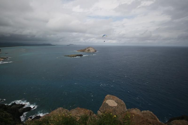 hang gliding off of makapu'u lighthouse trail