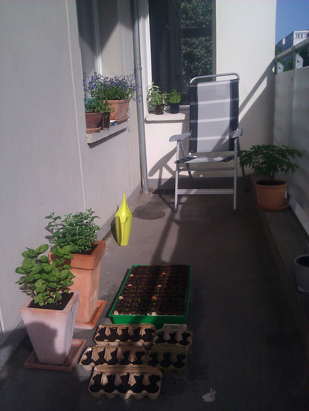 balcony in the sunshine