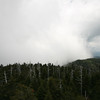 misty cloud coming in over the smokies atop clingman's dome