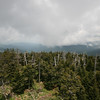 view from clingman's dome viewing platform