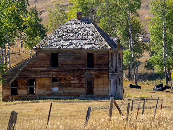 Old farm house near Molson.
