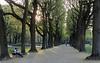 18 April 2018: the sun is about to set, Parc Cinquantenaire.