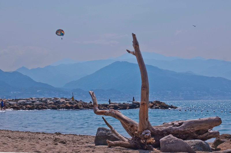 Driftwood, Mountains and Parasail